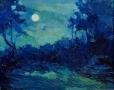 Pleine lune en été