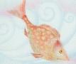 poisson doré
